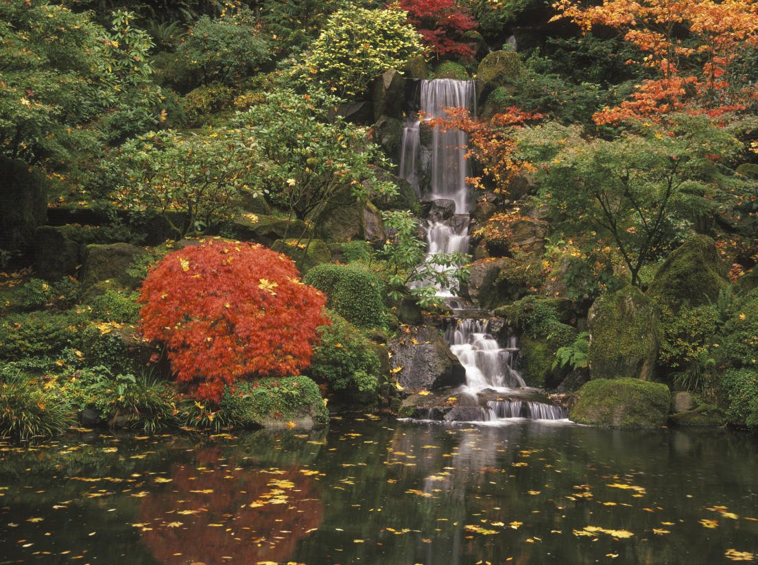 Incredible Japanese Japan Garden 1105 x 824 · 260 kB · jpeg